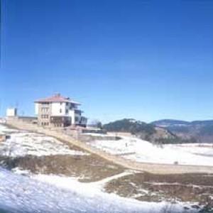 Gela Luxury Villa